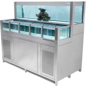 Impianti per depurazione e stabulazione molluschi - acquari vivai